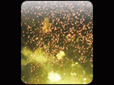 Фейерверк, эффект 41988_09